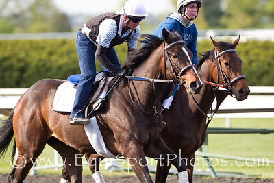 Psalm Singer (outside) at Keeneland 4.10.2012.
