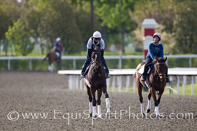 Psalm Singer gallops at Keeneland on 4.10.2012