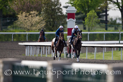 Psalm Singer gallops at Keeneland on 4.10.2012