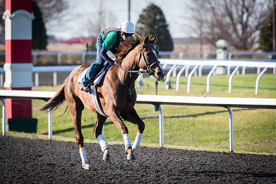 Rau Breck, with Craig Carver up, at Keeneland 4.01.2014.