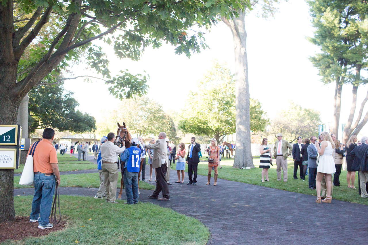 Rosalind being saddled at Keeneland before the Alcibiades
