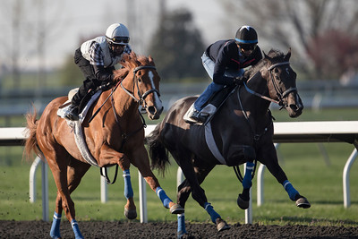 Rosalind (Broken Vow) works at Keeneland on 4.19.2014 with War Dancer in preparation for the Kentucky Oaks. Danny Ramsey up on Rosalind.  Alan Garcia up on War Dancer.