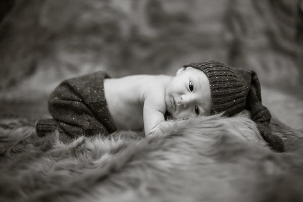 Lee Newborn{Image # (01)»}-12