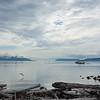 Lummi Island Fishing 1396