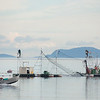 Lummi Island - Fishing 1429