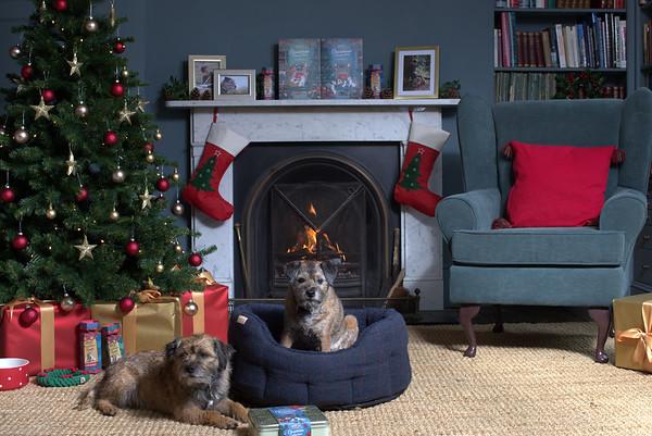 Christmas 2017 Promotional Shoot