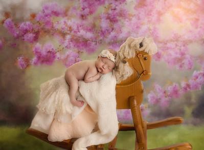 composite horse