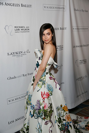 2018 Los Angeles Ballet Gala, Beverly Hills, America - 24 Feb 2018