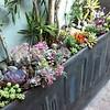 Design-Installation by Sacred Space Garden Design, Inc.