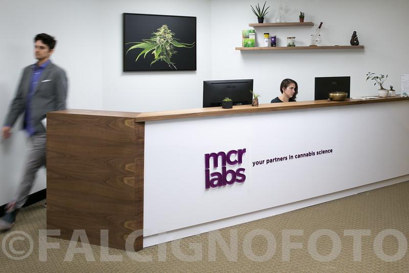 FalcignoFoto-MCR-HiRes-0058