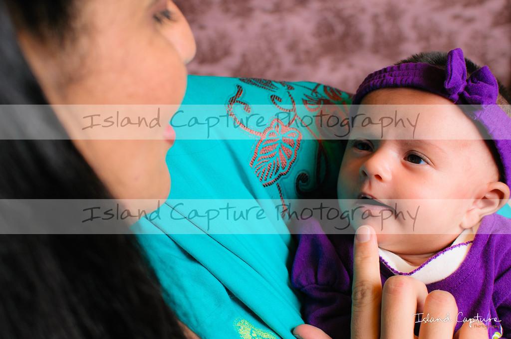 IslandCapture01_20120115_8253