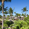 Mauna-Lani-Fairways-1506-014