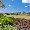 Mauna-Lani-Fairways-905-002