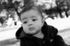 Maxwell_IMG_7887