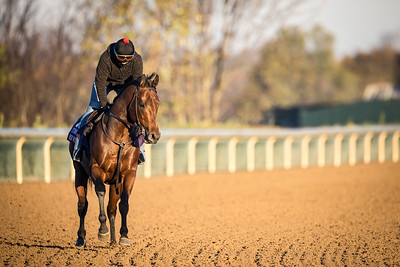 HORSE RACING 2020: Breeders Cup Preparations OCT 31