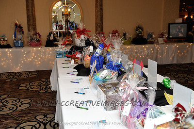 McHenry Photographer McHenry Chamber Dinner 1.2017
