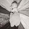 2016 May Easton Carpenter New Born Erica Delong-616 BW copy