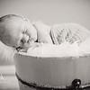 2016 May Easton Carpenter New Born Erica Delong-608 BW