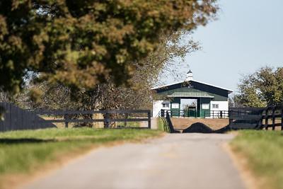 Mereworth Farm 10.24.18