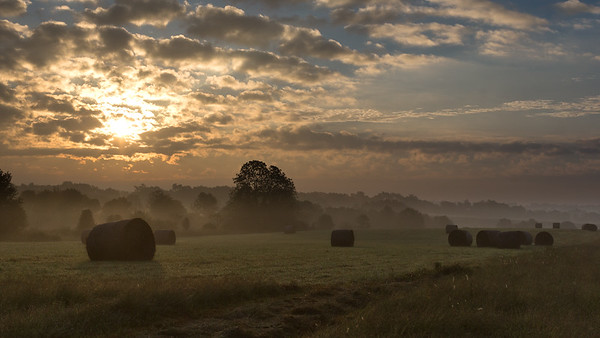 Mereworth morning scene 9.16.18.