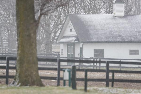 Mereworth farm 3.03.19