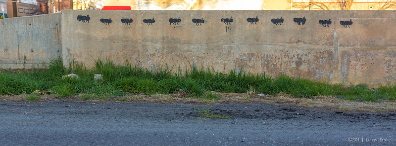 20140411 Loveland_Scholl_Spring-72_WEB
