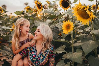 Sunflower- SunshynePIx-6277