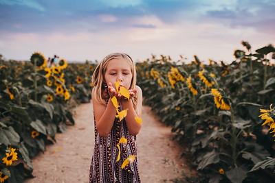 Sunflower- SunshynePIx-6479