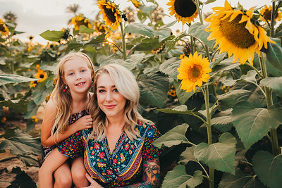 Sunflower- SunshynePIx-6273-Edit