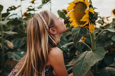 Sunflower- SunshynePIx-6228