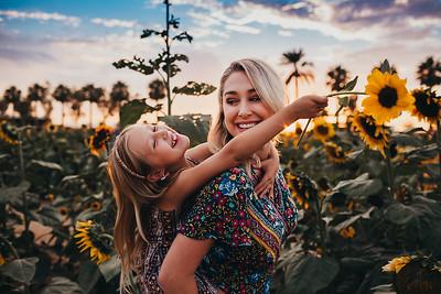 Sunflower- SunshynePIx-6365