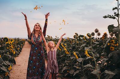 Sunflower- SunshynePIx-6495