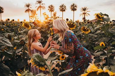 Sunflower- SunshynePIx-6306
