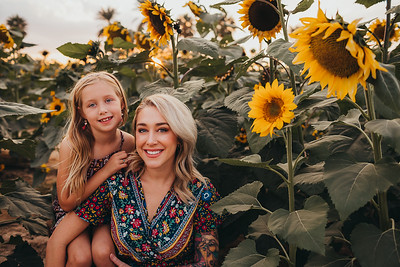 Sunflower- SunshynePIx-6279