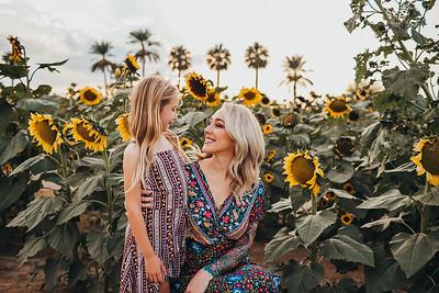 Sunflower- SunshynePIx-6070