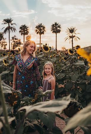 Sunflower- SunshynePIx-6190