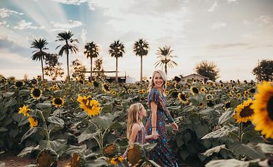 Sunflower- SunshynePIx-6129