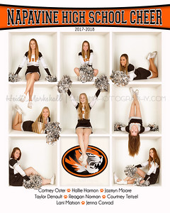 Napavine HS Cheer 8x10