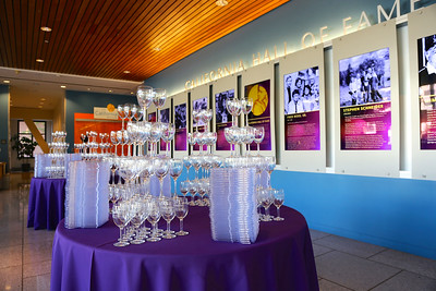 NeighborWorks Art, Wine & Food Classic, held on August 22, 2015, at the California Museum in Sacramento