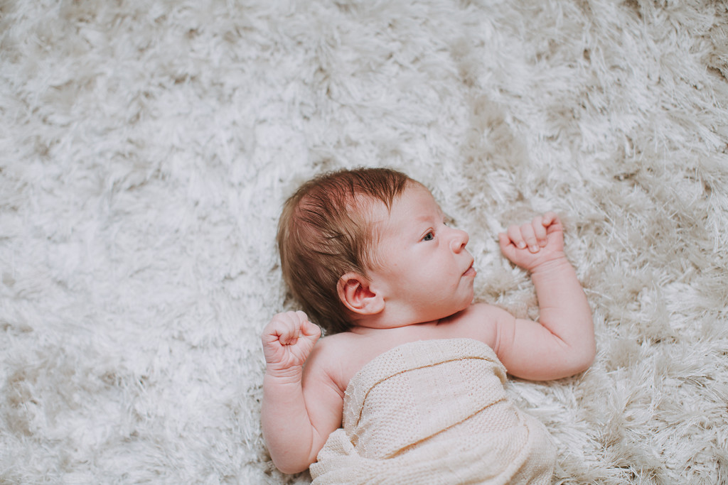 newborn photographers in the east bay