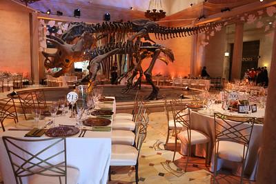 Natural History Museum 100th Anniversary Gala