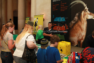 1205163-004    LOS ANGELES, CA - MAY 20:  The 2012 Bug Fair at the Natural History Museum of Los Angeles County on May 20, 2012 in Los Angeles, California. (Photo by Ryan Miller/Capture Imaging)