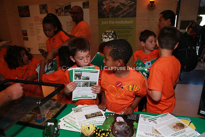 1205163-034    LOS ANGELES, CA - MAY 20:  The 2012 Bug Fair at the Natural History Museum of Los Angeles County on May 20, 2012 in Los Angeles, California. (Photo by Ryan Miller/Capture Imaging)