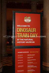 1208198-004     LOS ANGELES, CA - AUGUST 11:  Dinosaur Train Day at the Natural History Museum of Los Angeles County on August 11, 2012 in Los Angeles, California. (Photo by Ryan Miller/Capture Imaging)