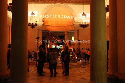 1201001-042        LOS ANGELES, CA - JANUARY 6: The NHM First Fridays event held at the Natural History Museum on January 6, 2012 in Los Angeles, California. (Photo by Ryan Miller/Capture Imaging)