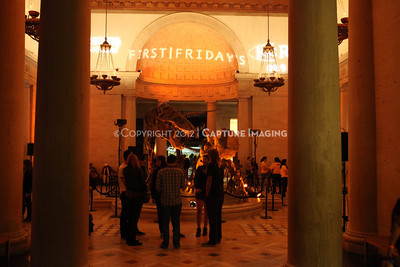 1201001-043        LOS ANGELES, CA - JANUARY 6: The NHM First Fridays event held at the Natural History Museum on January 6, 2012 in Los Angeles, California. (Photo by Ryan Miller/Capture Imaging)