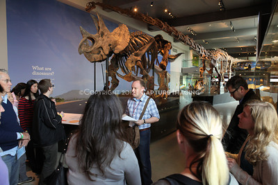 1203049-002      LOS ANGELES, CA - MARCH 30: The NHM First Fridays event at the Natural History Museum of Los Angeles County on March 30, 2011 in Los Angeles, California. (Photo by Ryan Miller/Capture Imaging)