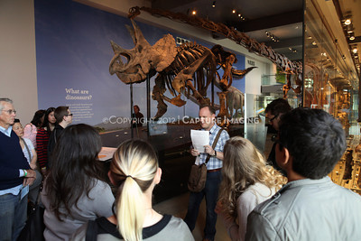 1203049-005      LOS ANGELES, CA - MARCH 30: The NHM First Fridays event at the Natural History Museum of Los Angeles County on March 30, 2011 in Los Angeles, California. (Photo by Ryan Miller/Capture Imaging)