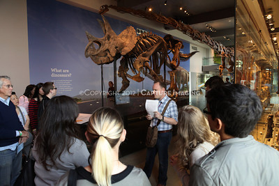 1203049-004      LOS ANGELES, CA - MARCH 30: The NHM First Fridays event at the Natural History Museum of Los Angeles County on March 30, 2011 in Los Angeles, California. (Photo by Ryan Miller/Capture Imaging)