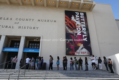 1206169-005    LOS ANGELES, CA - JUNE 2:  The NHM First Fridays Event at the Natural History Museum of Los Angeles County on June 2, 2012 in Los Angeles, California. (Photo by Ryan Miller/Capture Imaging)